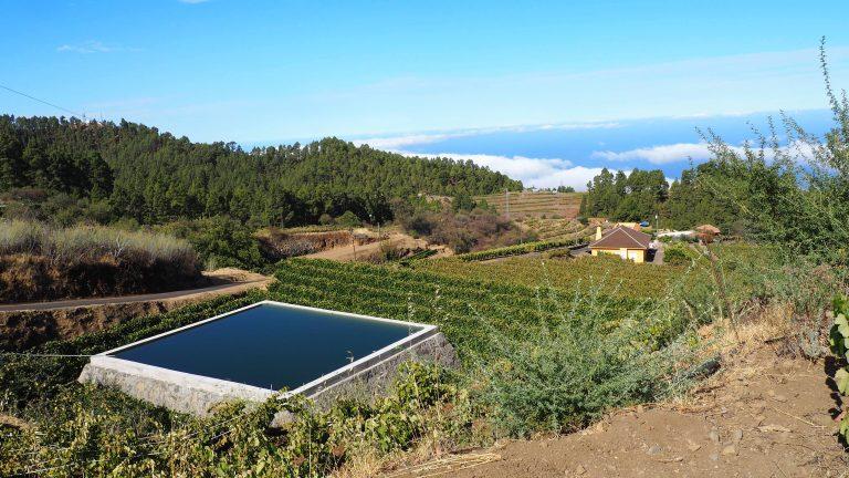 La Consejería forma en agricultura de precisión para mejorar la capacidad vitícola de Canarias
