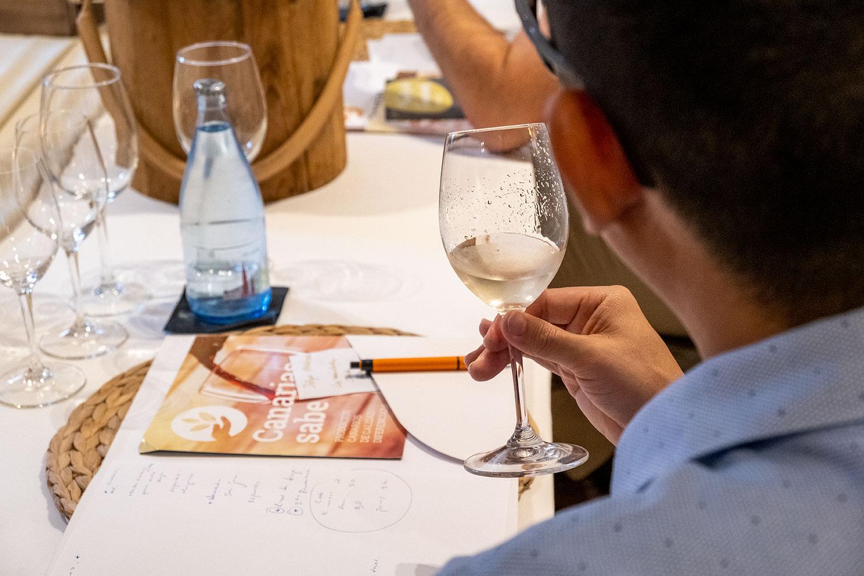 El Gobierno de Canarias pone en marcha un proyecto para introducir vinos volcánicos en los restaurantes de las islas