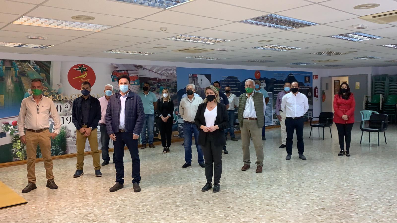 Vanoostende anuncia que el sector del tomate y el pepino tiene garantizadas las ayudas a la comercialización y el transporte