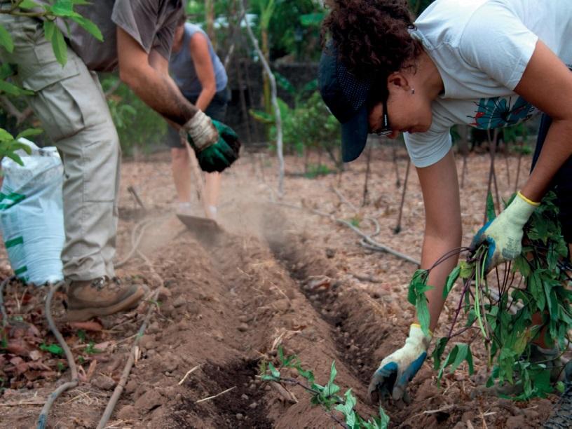 Ecocomedoresreactivasu programade alimentación ecológica para 50 centros escolares y 11.000 comensales
