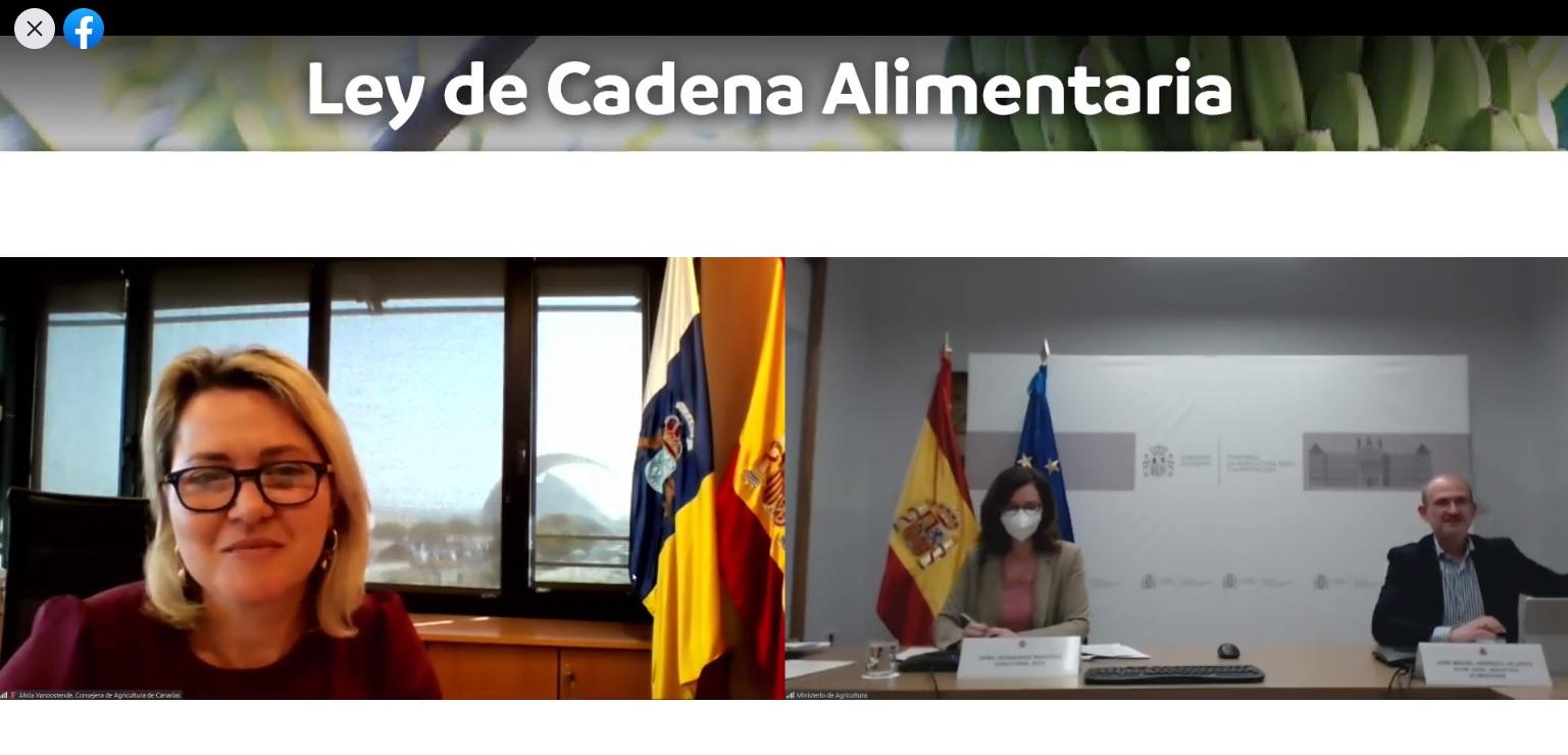 Gobierno canario y Ministerioabordanla Ley de Cadena Alimentariaen unforotelemático seguido por 200 personas